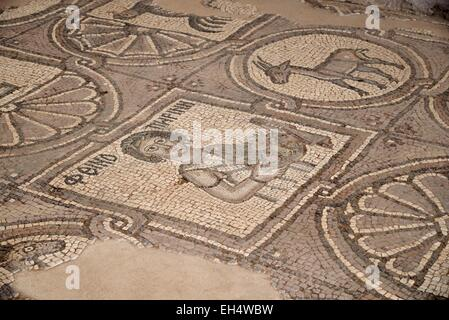 Jordan, Nabataean archeological site of Petra, listed as World Heritage by UNESCO, floor mosaics in the Byzantine - Stock Photo