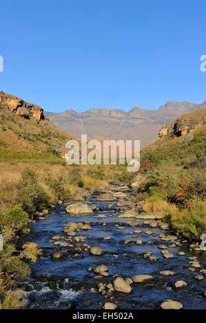 South Africa, Kwazulu Natal, Drakensberg mountains, uKhahlamba Park, listed as World Heritage by UNESCO, Giant's - Stock Photo