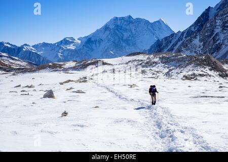 Nepal, Gandaki zone, Manaslu Circuit, between Dharamsala and Bimthang, climb to the Larkya Pass, Samdo Peak (alt.6335m) - Stock Photo