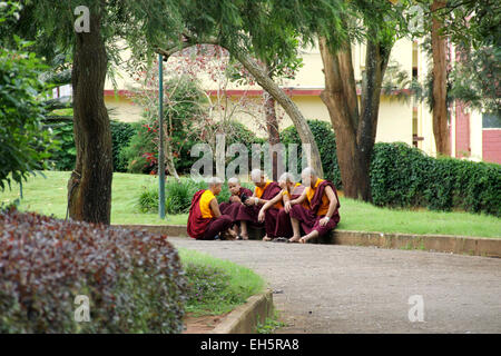 Teenage Buddhist Monks relaxing at garden. - Stock Photo