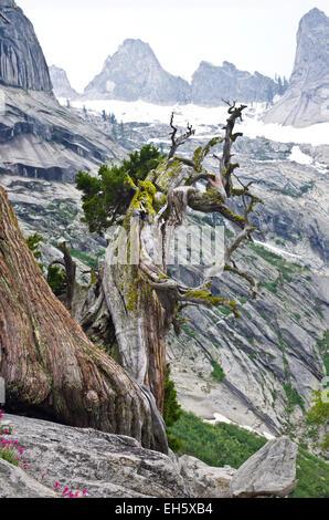 View Along The High Sierra Trail Near Hamilton Lake