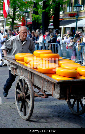 Man pushing cart with cheese rounds, Alkmaar Cheese Market, Netherlands - Stock Photo