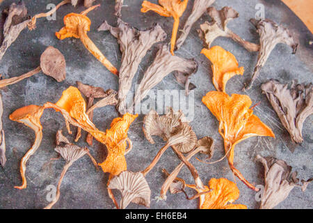 Dried black- , funnel- and ordinary chantarelles, on a stone plate - Stock Photo