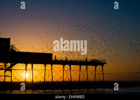 Aberystwyth, Wales, UK. 8th March, 2015. UK Weather:  At the end of an afternoon of clear blue skies and warm spring - Stock Photo