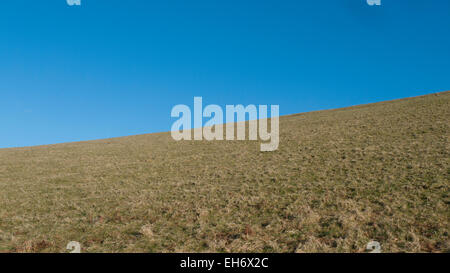 Blue sky with copy space and dry brown grass in field on farmland landscape with angle horizon in Carmarthenshire, - Stock Photo