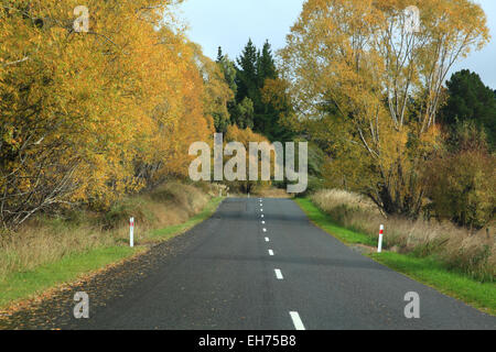 Long road stretching out into the distance with autumn tree in New Zealand - Stock Photo