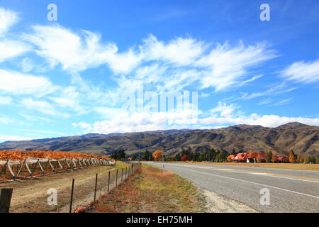Long road stretching out into the distance mountain background in New Zealand - Stock Photo
