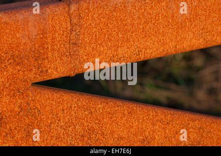 Rusty gate in the evening sunlight photographed near Grapeview, WA, Mason County, USA. - Stock Photo