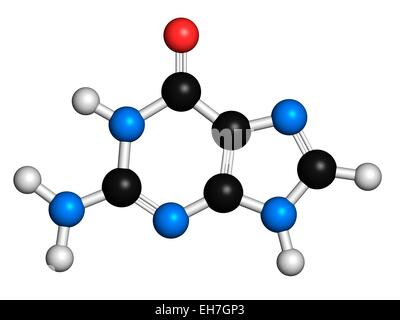 Guanine purine nucleobase molecule - Stock Photo
