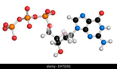 Deoxyguanosine triphosphate molecule - Stock Photo