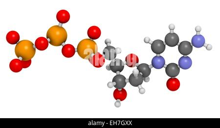 Deoxycytidine triphosphate molecule - Stock Photo