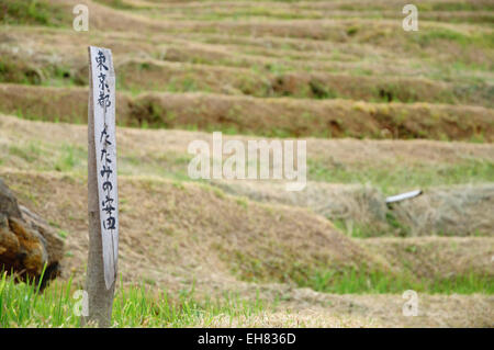 Wooden pole in rice field, with inscription indicating the name of the owner - Stock Photo