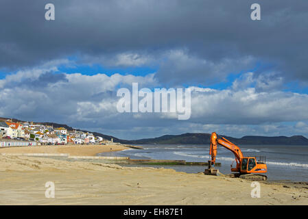 Levelling the beach with a JCB digger, Lyme Regis, Dorset, England UK - Stock Photo