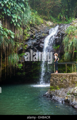 Woman looking at the Annandale Falls, Grenada, Windward Islands, West Indies, Caribbean, Central America - Stock Photo
