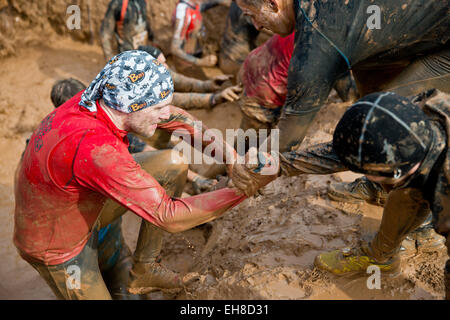 Participants help each other out of a mud pit   during the extreme course event 'Braveheart-Battle' in Muennerstadt,Germany, - Stock Photo