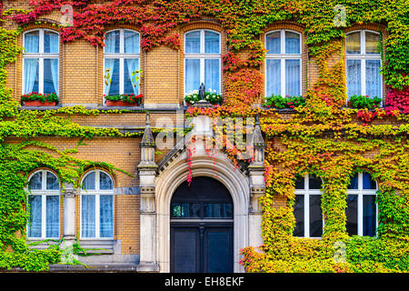 Vine covered building facade in Berlin, Germany. - Stock Photo