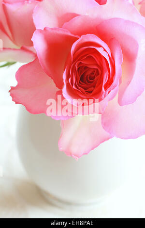 Beautiful romantic pink roses in a white vase still life - Stock Photo
