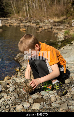 Seven year old boy searching for insects by turning over rocks, in Olallie State Park, in North Bend, Washington, - Stock Photo