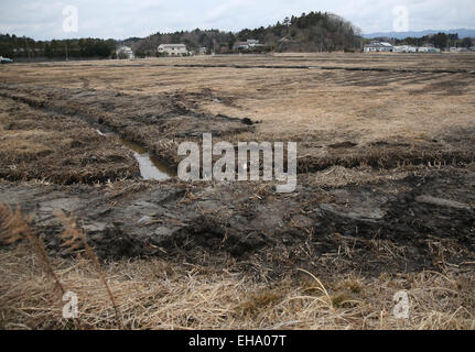 (150310) -- FUKUSHIMA, March 10, 2015 (Xinhua) -- Damaged fields and houses are seen in the Futaba District, located - Stock Photo
