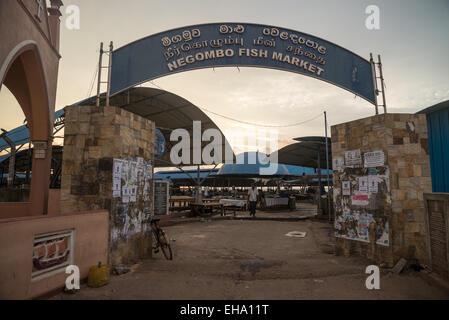 Gate to  Fresh fish market in Negombo, Sri Lanka, Asia - Stock Photo