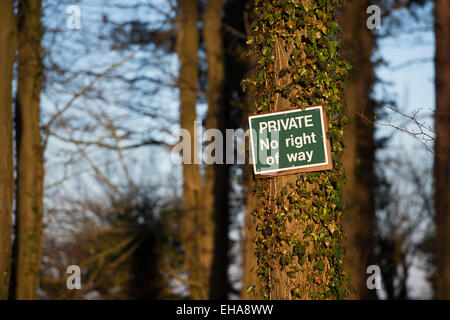 Private No Right Of Way sign nailed to a tree in a private woodland. UK - Stock Photo