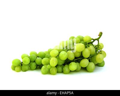Weintrauben / grapes