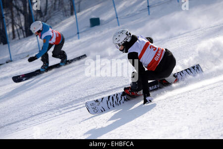 Yabuli town, Heilongjiang, China. 11th March, 2015. Elizaveta Salikhova (R) of Russia competes during the Ladies' - Stock Photo