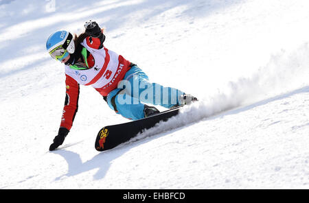 Yabuli town, Heilongjiang, China. 11th March, 2015. Michelle Dekker of the Netherlands competes during the Ladies' - Stock Photo