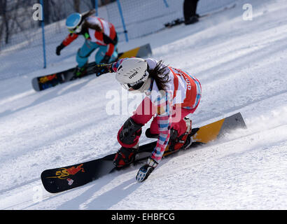 Yabuli town, Heilongjiang, China. 11th March, 2015. Natalia Soboleva (front) of Russia competes during the Ladies' - Stock Photo