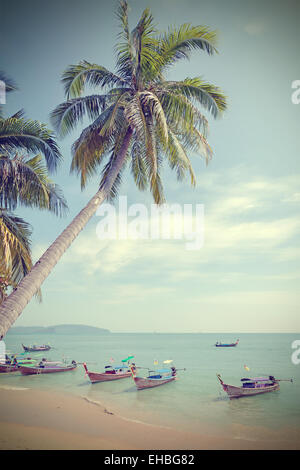 Vintage toned palm trees on a beach, summer background. - Stock Photo