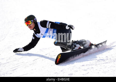 Yabuli Town, China. 11th March, 2015. Lee Sang-Ho of South Korea competes during the Men's Giant Slalom match on - Stock Photo
