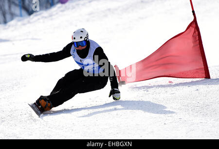 Yabuli Town, China. 11th March, 2015. Dario Caviezel of Switzerland competes during the Men's Giant Slalom match - Stock Photo