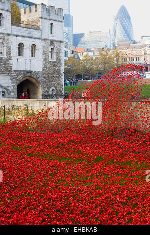 England, London, Tower Hamlets, Tower of London red ceramic poppy art installation by artists Paul Cummins and Tim - Stock Photo