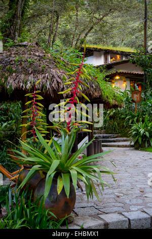 Heliconia flower, Machu Picchu Pueblo Hotel, Machu Picchu, Pueblo, Aguas Calientes,  Cusco Region, Urubamba Province, - Stock Photo
