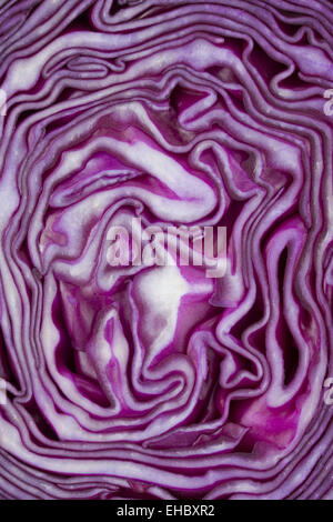detail of a sliced red cabbage - Stock Photo