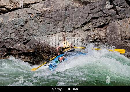 Woman rafter rowing through Upper Cliffside Rapid (class IV) on the Middle Fork of the Salmon River, Idaho - Stock Photo