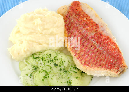 Red Snapper fillet with vegetables - Stock Photo