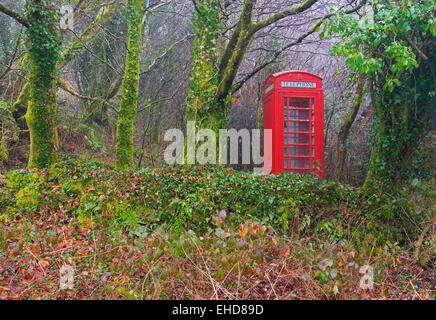 Red telephone box escaping into the wild, England UK - Stock Photo