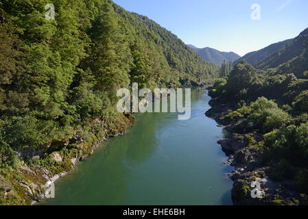 The Buller River flows through native beech forest in Westland, New Zealand. - Stock Photo