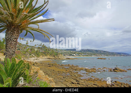 Laguna Beach Tide Pools with Palm Trees During Winter - Stock Photo