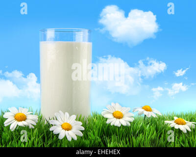 Glass of milk in the grass with daisies - Stock Photo