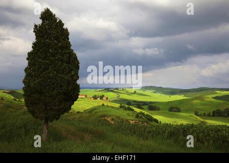 Crete Senesi, Val d'Arbia, Tuscany, Italy - Stock Photo
