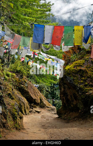 BU00329-00...BHUTAN - The upper portion of the well-used trail to Taktshang Goemba, (the Tiger's Nest Monastery). - Stock Photo