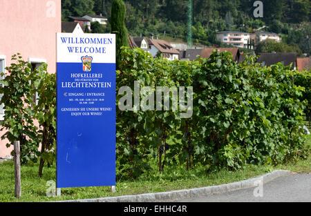 Hofkellerei Liechtenstein - Stock Photo