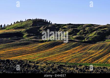 Crete Senesi near Leonina, Tuscany, Italy - Stock Photo