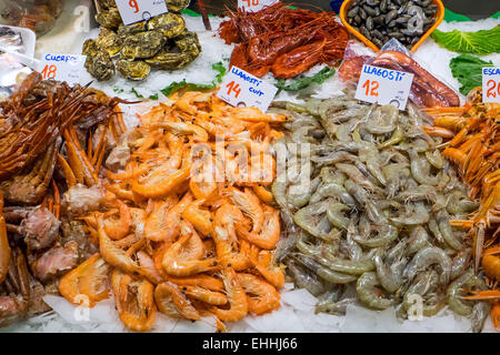 Shrimps and other seafood seen at the Boqueria market in Barcelona - Stock Photo