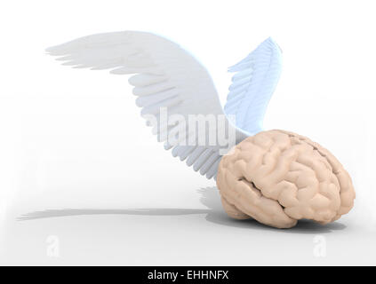 human brain with wings, 3d illustration - Stock Photo