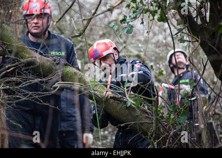 Bristol, UK. 14th Mar, 2015. After further evictions of protesters from tree-top platforms, specialist eviction - Stock Photo