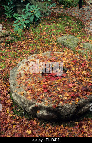 Maple leaves cover a stone basin in November giving this scene in the Arashiyama area an especially romantic aura. - Stock Photo