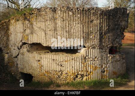 Remains of a World War one machine gun bunker at Hill 60 battlefield, Belgium. - Stock Photo
